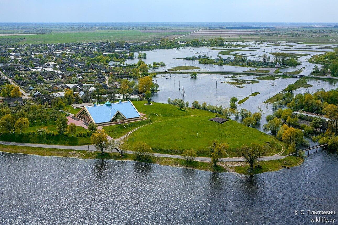 """Bélarus, Turov. îlot avec le cimetière avec les fameuses croix en pierre qui """"grandissent"""""""
