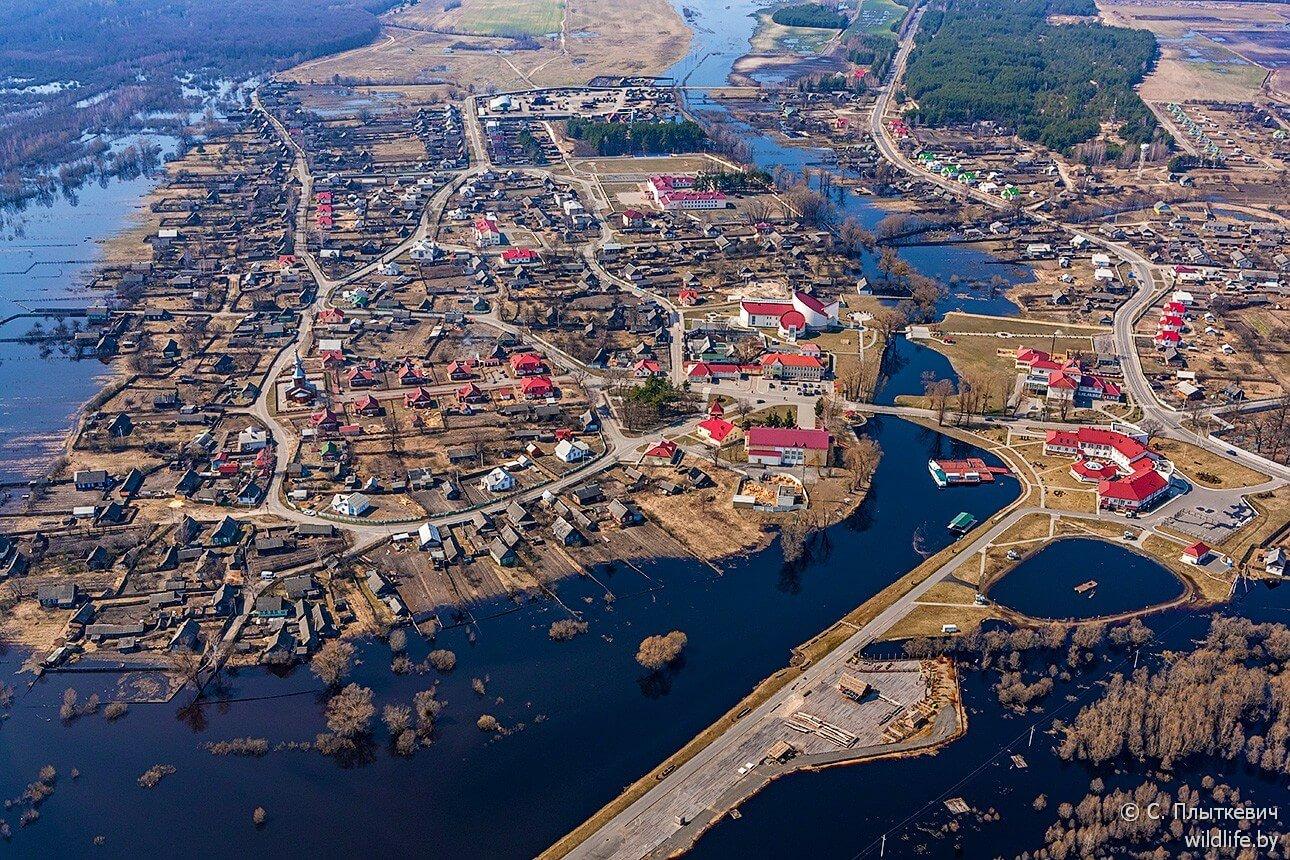 Paysages biélorussie parc national Pripiatski