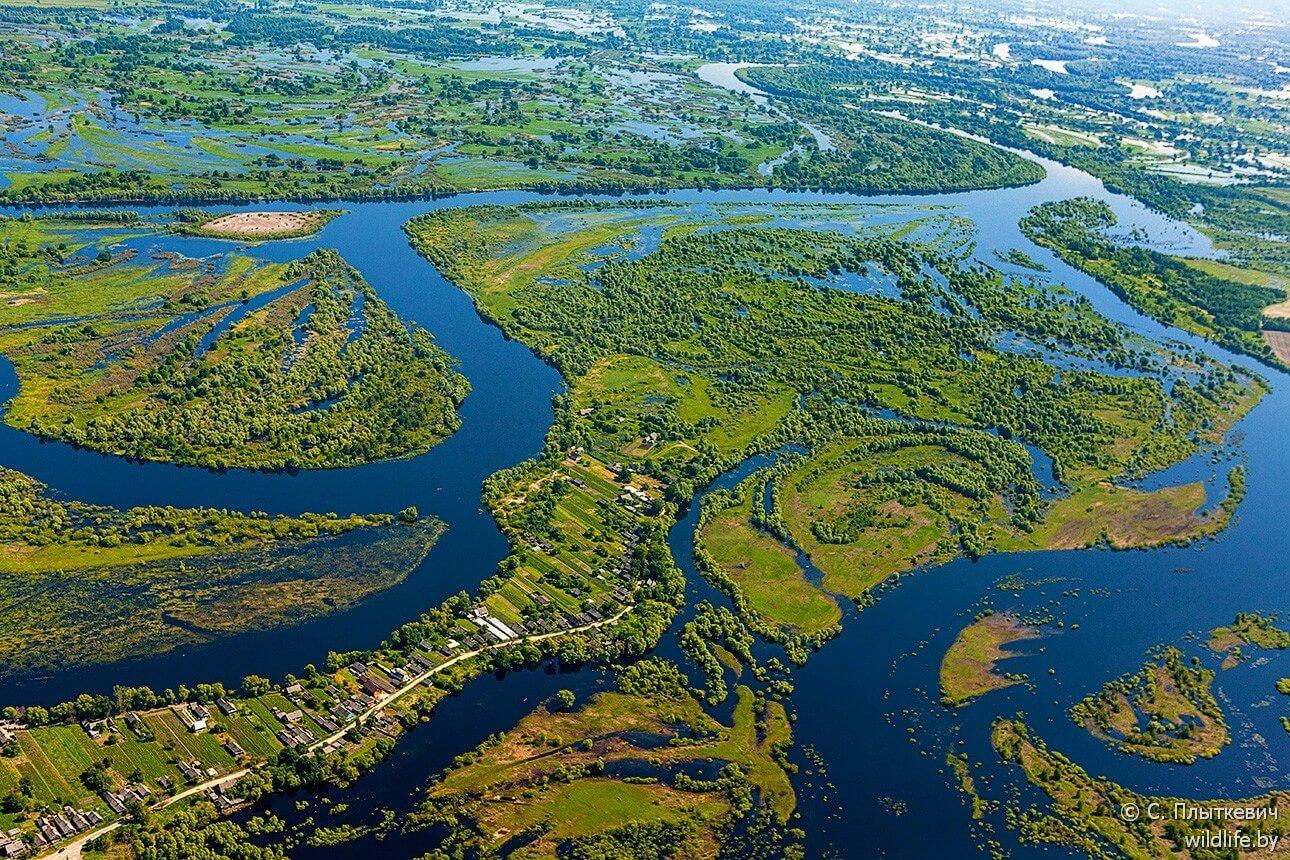 Rivière et forêts biélorusses