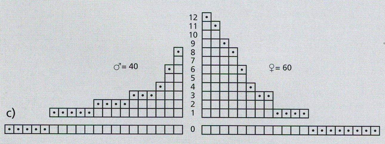 піраміда 2.jpg