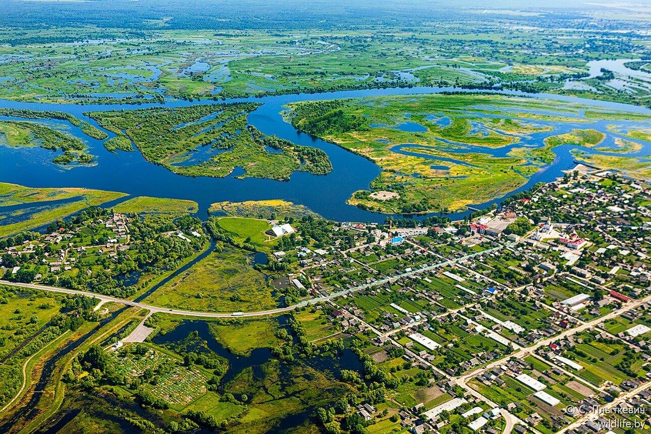 Vue du eau sur la Polésie en Biélorussie