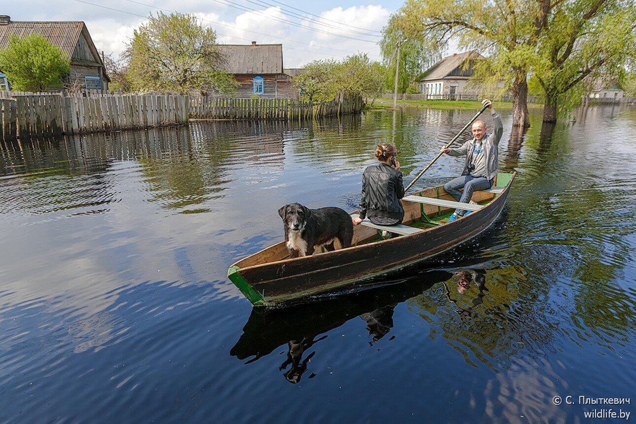 Hautes eaux biélorussie