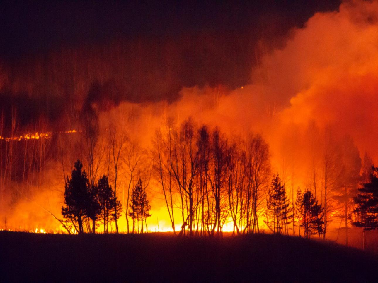 охотно фото пожаров сибирь пытаешься