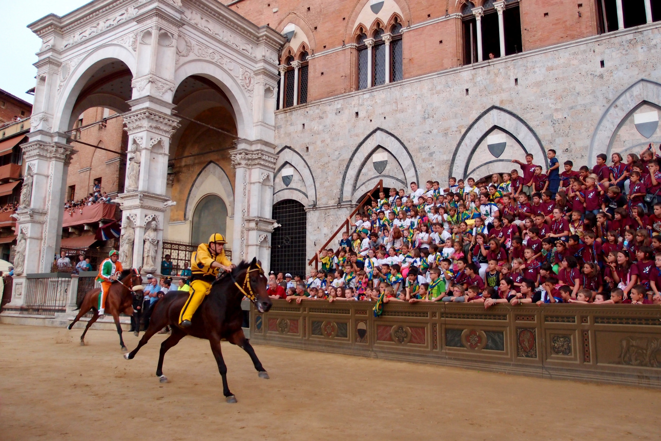 people-crowd-horse-tourism-festival-jockey-bullring-tradition-races-middle-ages-palio-sienna-538564.jpg